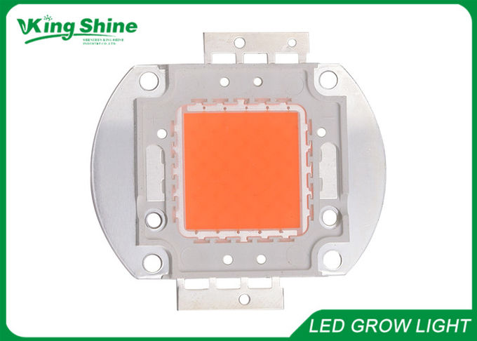 Grow Lights Full Spectrum Led Chip 120W  For Greenhouse Vegetables / Fruits